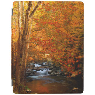 USA, Tennessee. Rushing Mountain Creek 2 iPad Cover