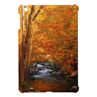 USA, Tennessee. Rushing Mountain Creek 2 iPad Mini Case
