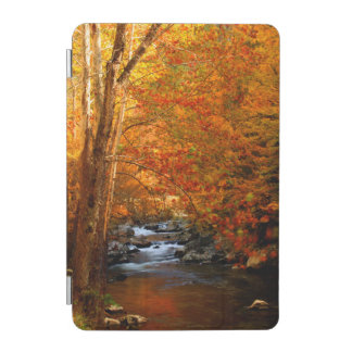 USA, Tennessee. Rushing Mountain Creek 2 iPad Mini Cover