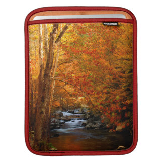 USA, Tennessee. Rushing Mountain Creek 2 iPad Sleeves