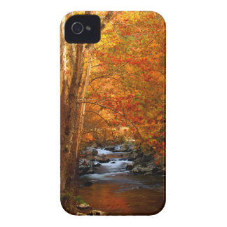 USA, Tennessee. Rushing Mountain Creek 2 iPhone 4 Case-Mate Cases