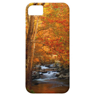 USA, Tennessee. Rushing Mountain Creek 2 iPhone 5 Covers