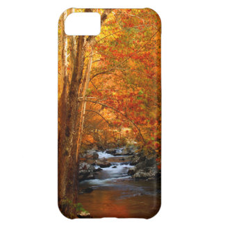 USA, Tennessee. Rushing Mountain Creek 2 iPhone 5C Case