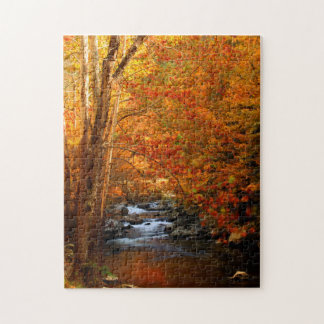 USA, Tennessee. Rushing Mountain Creek 2 Jigsaw Puzzle