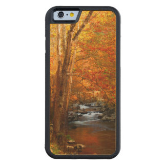 USA, Tennessee. Rushing Mountain Creek 2 Maple iPhone 6 Bumper Case