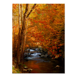 USA, Tennessee. Rushing Mountain Creek 2 Poster