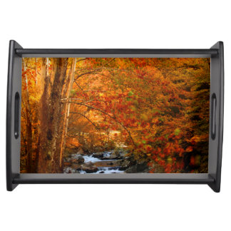 USA, Tennessee. Rushing Mountain Creek 2 Serving Tray