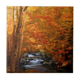 USA, Tennessee. Rushing Mountain Creek 2 Tile