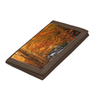 USA, Tennessee. Rushing Mountain Creek 2 Trifold Wallet