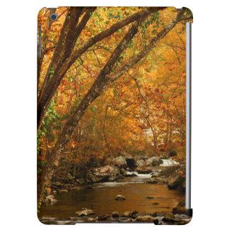 USA, Tennessee. Rushing Mountain Creek 3