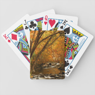 USA, Tennessee. Rushing Mountain Creek 3 Bicycle Playing Cards