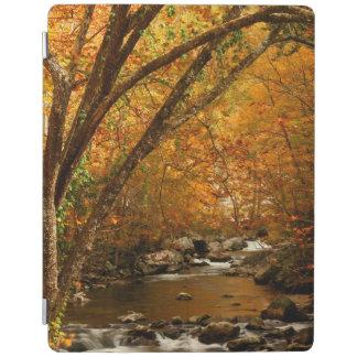 USA, Tennessee. Rushing Mountain Creek 3 iPad Cover