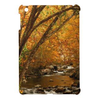 USA, Tennessee. Rushing Mountain Creek 3 iPad Mini Cases
