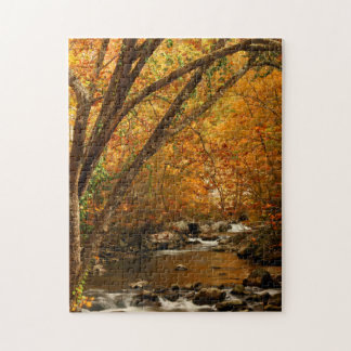 USA, Tennessee. Rushing Mountain Creek 3 Jigsaw Puzzle
