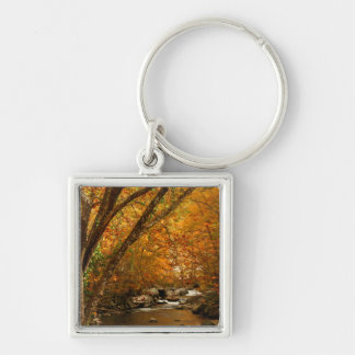 USA, Tennessee. Rushing Mountain Creek 3 Key Ring