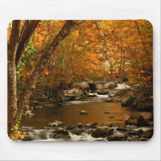 USA, Tennessee. Rushing Mountain Creek 3 Mouse Mat