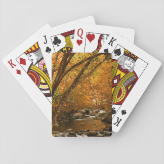 USA, Tennessee. Rushing Mountain Creek 3 Playing Cards