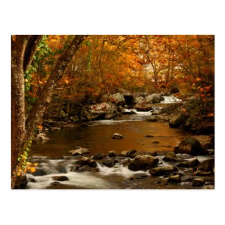 USA, Tennessee. Rushing Mountain Creek 3 Postcard