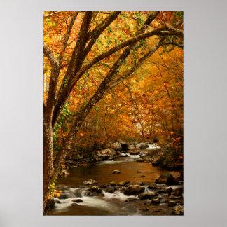 USA, Tennessee. Rushing Mountain Creek 3 Poster