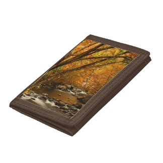 USA, Tennessee. Rushing Mountain Creek 3 Tri-fold Wallet