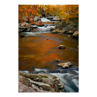USA, Tennessee. Rushing Mountain Creek 4 Poster