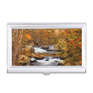 USA, Tennessee. Rushing Mountain Creek Business Card Holder