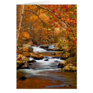 USA, Tennessee. Rushing Mountain Creek Card