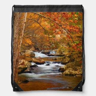 USA, Tennessee. Rushing Mountain Creek Drawstring Bag