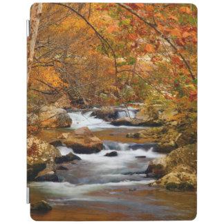 USA, Tennessee. Rushing Mountain Creek iPad Cover