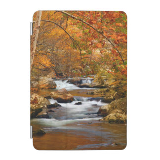 USA, Tennessee. Rushing Mountain Creek iPad Mini Cover
