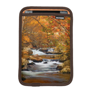 USA, Tennessee. Rushing Mountain Creek iPad Mini Sleeve