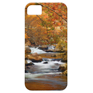 USA, Tennessee. Rushing Mountain Creek iPhone 5 Case