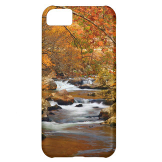 USA, Tennessee. Rushing Mountain Creek iPhone 5C Case