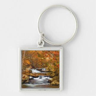 USA, Tennessee. Rushing Mountain Creek Key Ring