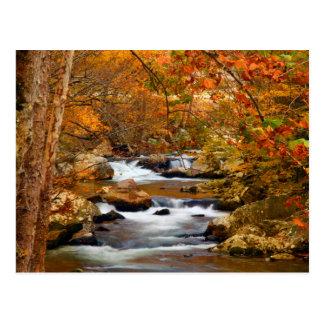 USA, Tennessee. Rushing Mountain Creek Postcard