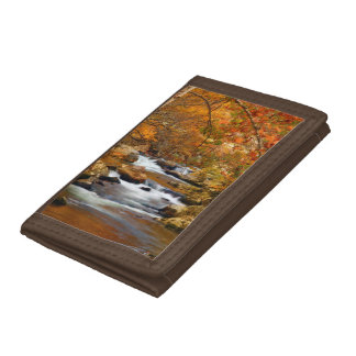 USA, Tennessee. Rushing Mountain Creek Trifold Wallet