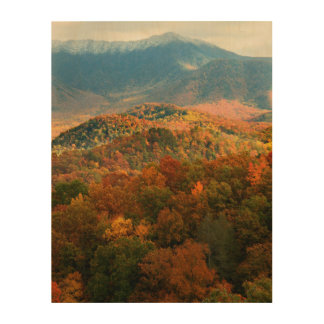 USA, Tennessee. View Of Snowy Mount Leconte Wood Print