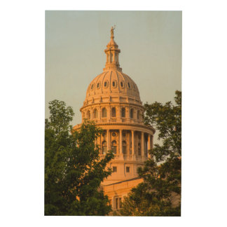 USA, Texas, Austin. Capitol Building (1888) 4 Wood Wall Art