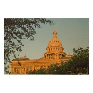 USA, Texas, Austin. Capitol Building (1888) Wood Wall Art