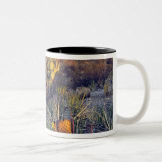 USA, Texas, Big Bend NP. A sandy pink dusk Coffee Mug