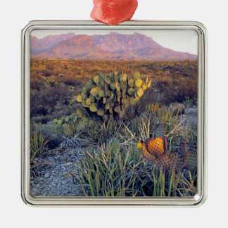 USA, Texas, Big Bend NP. A sandy pink dusk Silver-Colored Square Decoration