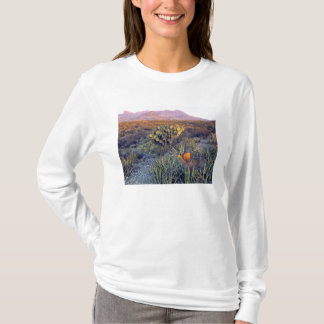 USA, Texas, Big Bend NP. A sandy pink dusk T-Shirt