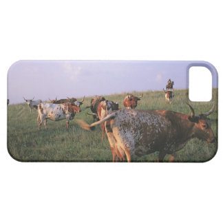 USA, Texas, Fortworth, cowboys looking after Barely There iPhone 5 Case