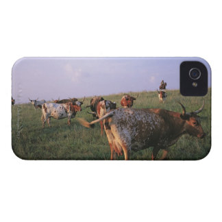 USA, Texas, Fortworth, cowboys looking after iPhone 4 Case