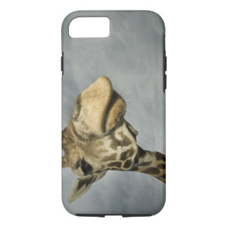 USA, Texas, Fossil Rim Wildlife Area, giraffe iPhone 8/7 Case