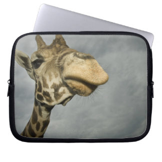 USA, Texas, Fossil Rim Wildlife Area, giraffe Laptop Sleeve