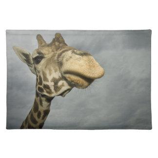 USA, Texas, Fossil Rim Wildlife Area, giraffe Placemats