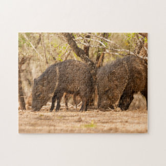 USA, Texas, Hidalgo County 3 Jigsaw Puzzle