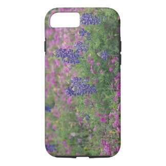 USA, Texas Hill Country. Bluebonnets among phlox iPhone 8/7 Case