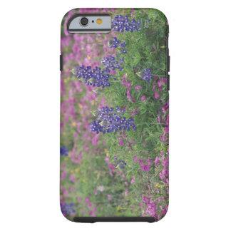 USA, Texas Hill Country. Bluebonnets among phlox Tough iPhone 6 Case